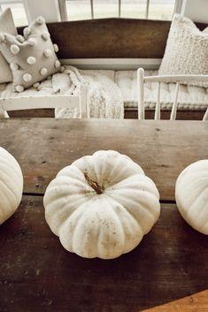 Simple Fall Decor. - Liz Marie Blog