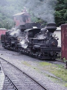 Cass Shay #2, Lima, Ohio, used primarily in logging , running switch backs up mountains . Notice the vertical steam chest and a gear meshing into that cams that drive the wheels.