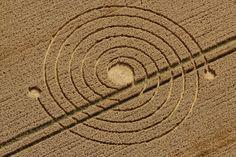 agrolifos-espirales