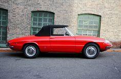 Alfa Romeo Spider Vintage Signs, Vintage Cars, Alfa Romeo Usa, Alfa Romeo Spider, Car Signs, Car Chevrolet, General Motors, Car Car, Mopar