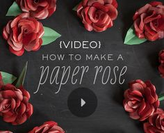 How to make a paper rose Valentine's Day DIY craft project