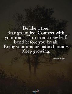 Be like a tree. Stay grounded. Connect with your roots. Turn over a new leaf. Bend before your break. Enjoy your unique natural beauty. Keep growing.
