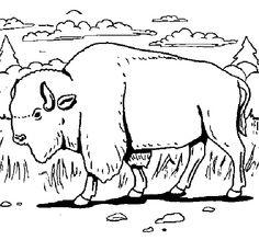buffalo bills logo coloring page