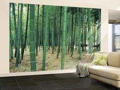 Bamboo Forest Huge Wall Mural Poster Print Wall Mural at AllPosters.com