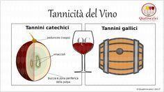 I tannini e la tannicità del vino