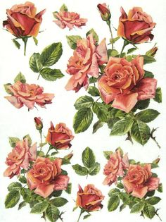 Rice Paper for Decoupage Scrapbooking SheetsVintage Red Roses