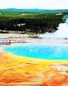 Yellowstone National Park(my new stateWyoming) love Yellowstone its beautiful!!