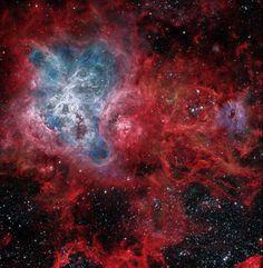 "the-wolf-and-moon: "" Cosmic Web of the Tarantula Nebula ""                                                                                                                                                                                 More"