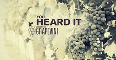 Want to learn awesome and inspiring facts from all over the world? Take From The Grapevine's Challenge & enter to win a $500 Hotels.com gift card!
