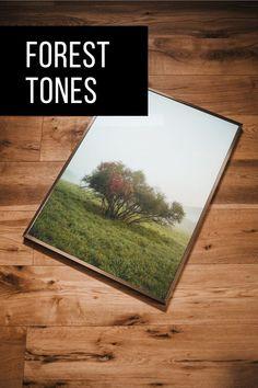 Du bist auf der Suche nach einem hochwertigen Bild von Pflanzen oder einem Waldmotiv? Dann haben wir das Richtige! Prints von echten Fotografen für deine neue Wohnung. Dein Stück Wald mit ein paar Klicks bequem online bestellen – mit garantiertem Erholungs-Feeling!