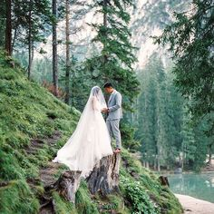 ELOPEMENT IN THE DOLOMITE ALPS  Why not invite the nature as wedding guests, Striding through the avenues, inhaling the blossoms, always surrounded by her.    Love this impressive picture of @thecablookfotolab.  Film lab: @carmencitalab .  .  .  #see more on #hochzeitsguide # weddingblog #elopement # dolomitealps #southtyrolia #destinationweddingphotographer #weddingphotography #destinantionwedding #bride #groom #vow #adventurouscouples #alternativeweddings #intimateweddings…