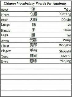 Chinese Vocabulary Words for Anatomy - Learn Chinese 。。。hair is 头发 (tou fa). Nose is 鼻子 (bi zi). Eyebrow is 眉毛 (mei mao) Basic Chinese, Chinese Words, Learn Chinese, Chinese Hair, Chinese Writing, Cantonese Language, Chinese Language, Japanese Language, Spanish Language