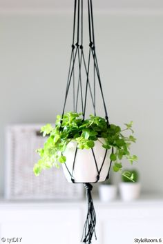 viherkasvit,vihreä,kukkaruukku,amppeli,Tee itse - DIY House Plants Decor, Plant Decor, Indoor Flowers, Indoor Plants, Front Porch Flowers, Green Home Decor, Diy Shops, Macrame Plant Hangers, Hanging Pots