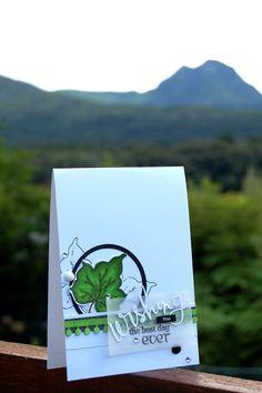 Kaartjie kreatief / Cards creative: FMS#233
