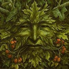 acorn greenman