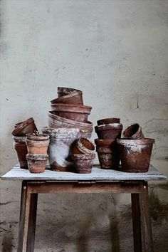 I love terracotta pots, I would love to plant all my flowers in them
