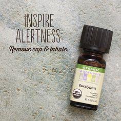 Inspire Alertness
