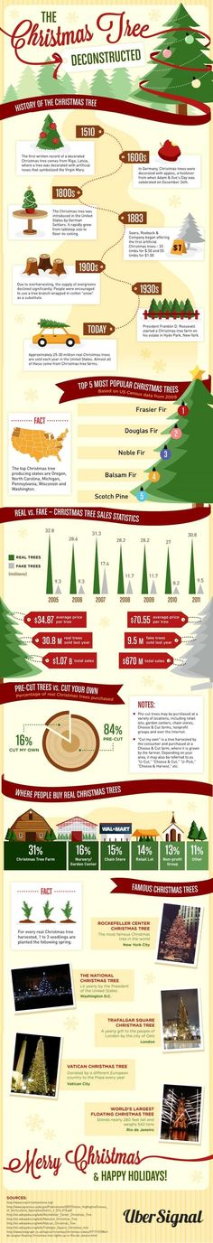 Want to know all about Christmas trees?