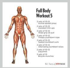 Full Body Description
