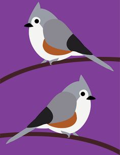 The Objects of Design: Tufted titmouse.