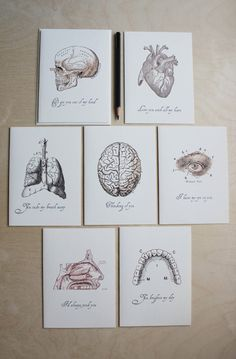 Anatomical Valentine's Cards