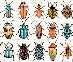 boy bug fabric