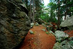 Black River State Forest In Wisconsin Has Beautiful Rocks That Are Millions Of Years Old