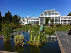 Kaisaniemi Botanic Garden, #Helsinki