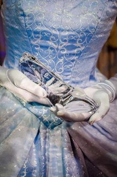 Cinderella and her glass slipper Disney World ./ qw