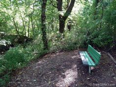 Gahanna Woods | http://trekohio.com/2012/08/27/gahanna-woods/