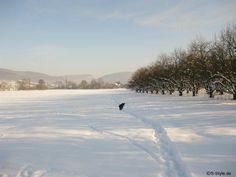 Fränkische Schweiz Winter 2010/2011