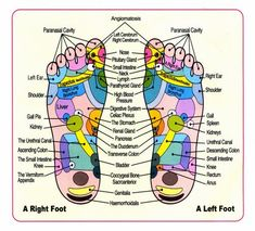acupuncture bottom feet http://patricialee.me/2012/10/