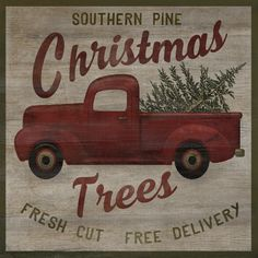 Every year the Christmas tree comes home in the back of Dad's beat old pick up truck.