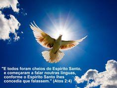 """""""Portanto nenhuma condenação há para os que estão em Cristo Jesus, que não andam segundo a carne, mais segundo o Espirito."""" Romanos 6: 1"""