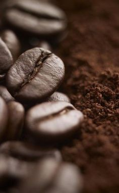 Why settle for good coffee when it could be great? All you need are the best coffee beans. I Love Coffee, Coffee Break, Best Coffee, Black Coffee, Coffee Cafe, Coffee Shop, Starbucks Coffee, Coffee Photography, Food Photography