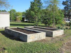 Cinder block raised vegetable beds