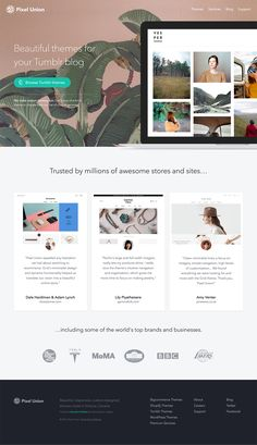 Pixel Union - Ecommerce Themes, Custom Design and Development