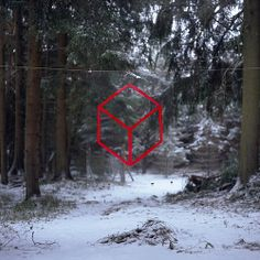 Red Cube by Thomas Albdorf. There is nothing I like better than Albdorf in the woods.