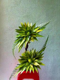 Discover thousands of images about Leaf arrangements Altar Flowers, Home Flowers, Church Flowers, Funeral Flowers, Unique Flowers, Beautiful Flowers, Tropical Flowers, Tropical Floral Arrangements, Large Flower Arrangements