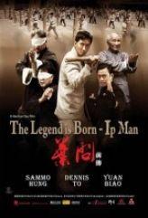 Ip Man Efsane Doğuyor – The Legend Is Born Ip Man
