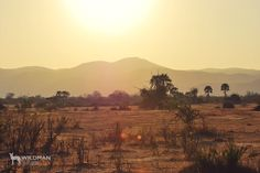 Lower Zambezi National Park.  #africansunset #africa #africansafari #zambia African Sunset, African Safari, Monument Valley, South Africa, National Parks, Mountains, Landscape, Travel, Outdoor