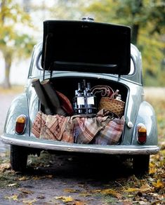 Volkswagon bug, picnic, outdoors,