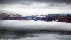 The Weather Channel has revealed some of the scenic submissions in its annual It's Amazing Out There Photo Contest, with entries sent in by photographers around the globe. The Weather Channel, Travel News, Cool Photos, Amazing Photos, Photo Contest, Mists, Grand Canyon, Arizona, Waves