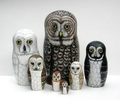 nesting owls (have as different species written either inside or on the bottom) (can do a version of bird food chain starting from the berry/seed, to chick, egg, chickadee, shrike, owl, hawk, eagle)
