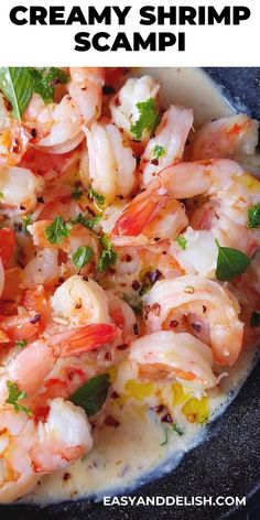One Pan, 20-minute Creamy Shrimp Scampi Recipe that makes the perfect dinner, saving you major time in the kitchen. It's gluten-free, keto, and low-carb dinner for the family. Check out the recipe!   #dinnerfoodrecipes #glutenfreedinner #lowcarbdinner #shrimprecipes #dinnerrecipes #shrimp #dinner #recipes #scampi