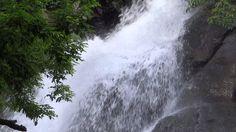 kutralam waterfalls - Yahoo Image Search Results Yahoo Images, Waterfalls, Niagara Falls, Image Search, Nature, Travel, Outdoor, Outdoors, Naturaleza
