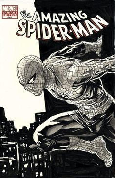 Spider-man Lee Bermejo Comic Art