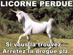"""Résultat de recherche d'images pour """"licorne marrante"""""""