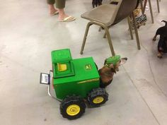 She thinks my tractors sexy!!!!!!!