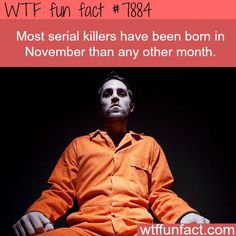 WTF Fun Facts For Your Brain to Absorb 35 WTF Fun Facts For Your Brain to Absorb - The internet has generated a huge amount of laughs from cats and FAILS. And we all out of cats. Fun Facts Scary, Wierd Facts, Random Facts, Wtf Fun Facts Funny, Scary Scary, Weird But True, Strange Facts, Creepy Stuff, Weird Things